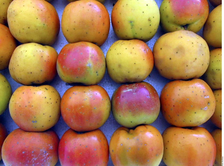 frutas para limpiar el higado y los riñones