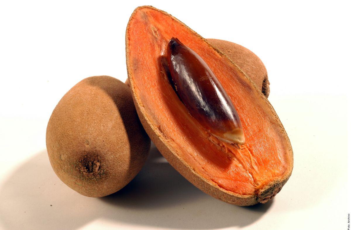 El mamey es una poderosa fuente de antioxidantes y se le atribuyen grandes beneficios antiinflamatorios.