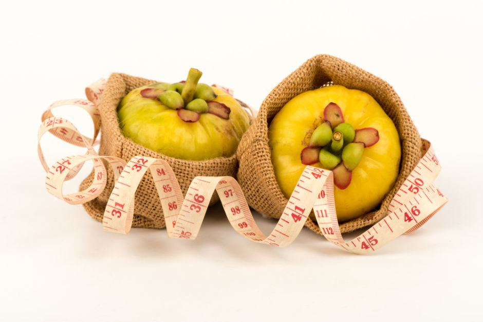 suplemento natural perder peso