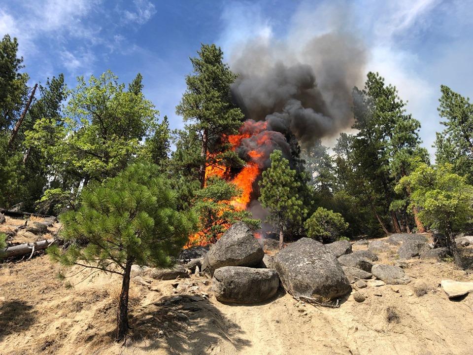 Incendio forestal en Parque Nacional Plumas se extiende a 17 mil hectáreas en California
