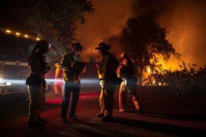 Bomberos controlan incendio al sur de Los Ángeles y descubren plantación de marihuana