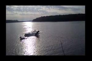 VIDEO: Cocodrilo devora a un perro ante la atónita mirada de su dueño