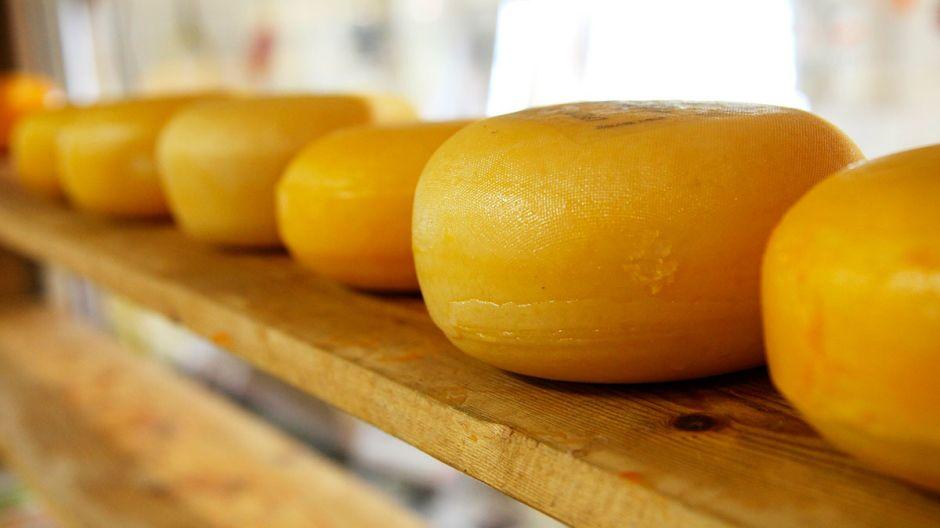 Roban $50,000 de queso y lo venden de puerta en puerta