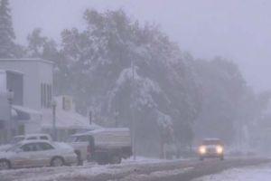 Tormenta de nieve en otoño no empaña bodas en Washington