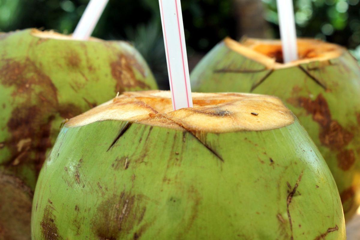 El agua de coco, ¿es verdaderamente tan sana como se cree?