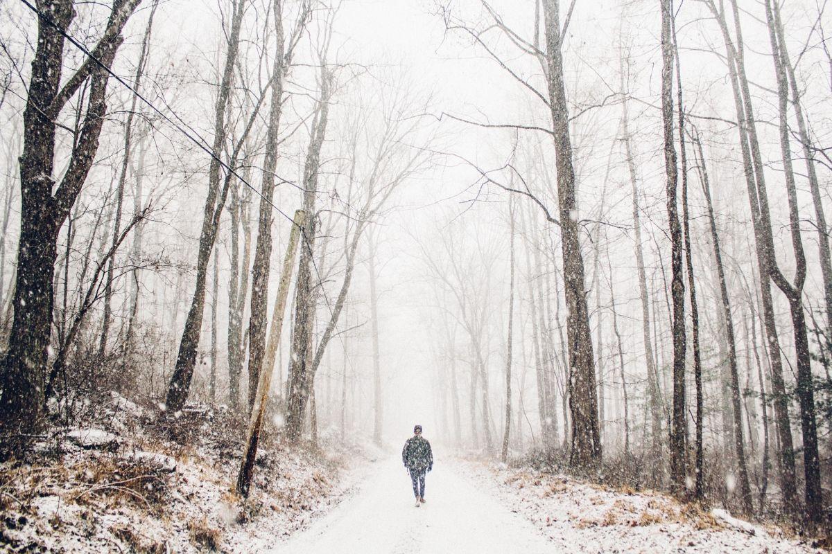Las nevadas desde las llanuras hacia el noreste podría caer tan al sur como Tennessee