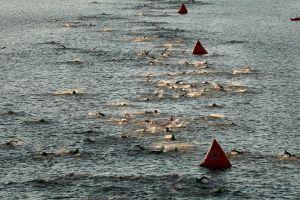 Atleta muere nadando en el Ironman Cozumel 2019