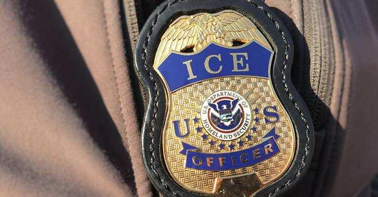 Inmigrante es entregado a ICE por cortar sin permiso un árbol