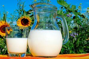 Cuánto costaba un galón de leche el año en que naciste