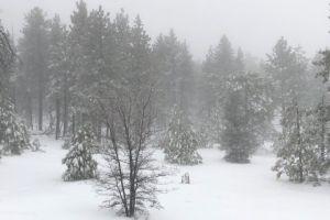 ¡Nieve en el sur de California!