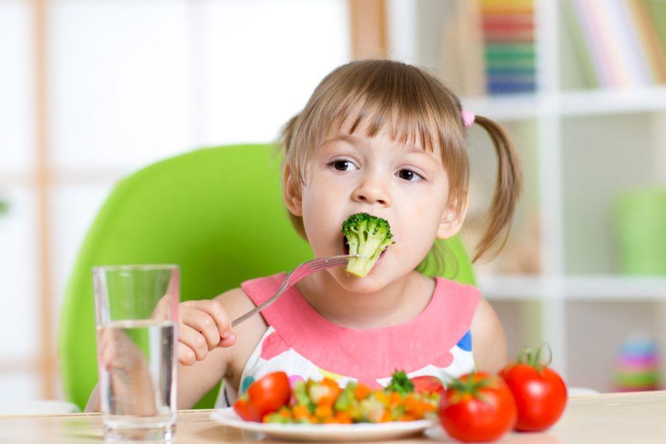 ¿Es posible implementar exitosamente la dieta vegana en niños sin correr riesgos?
