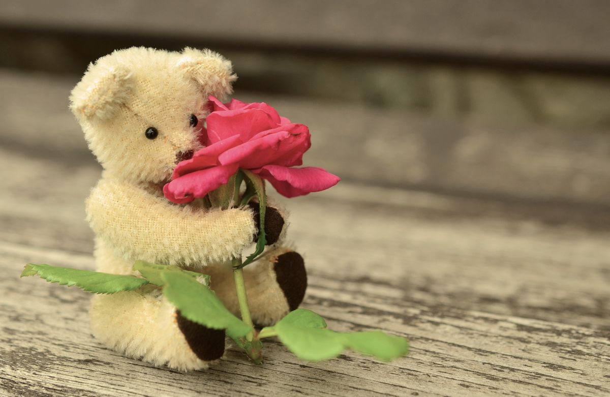 Le regaló oso de peluche con droga a su ex en venganza pero el plan le salió mal
