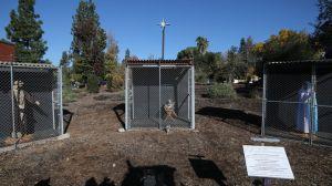 Cómo la foto de un pesebre de una iglesia de California ha dado la vuelta al mundo