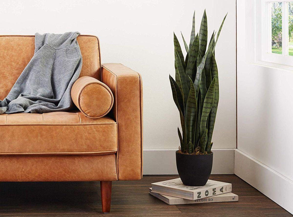 5 sets de plantas artificiales para darle un toque natural a tu hogar sin esforzarte