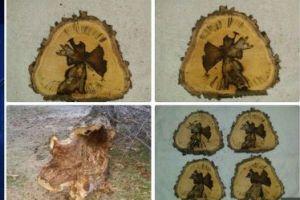 """Texas: ¿Un """"milagro navideño"""" en el tronco de un árbol?"""