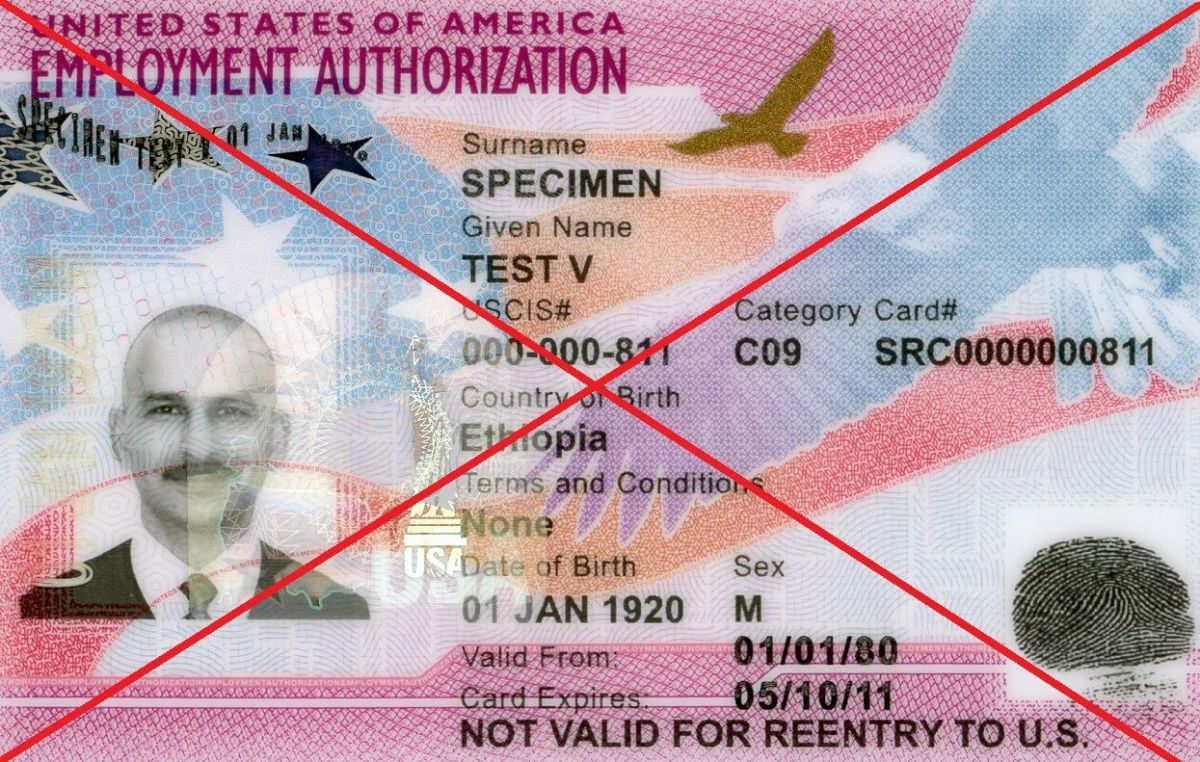 La Autorización de Empleo sería negada a discrecionalidad.