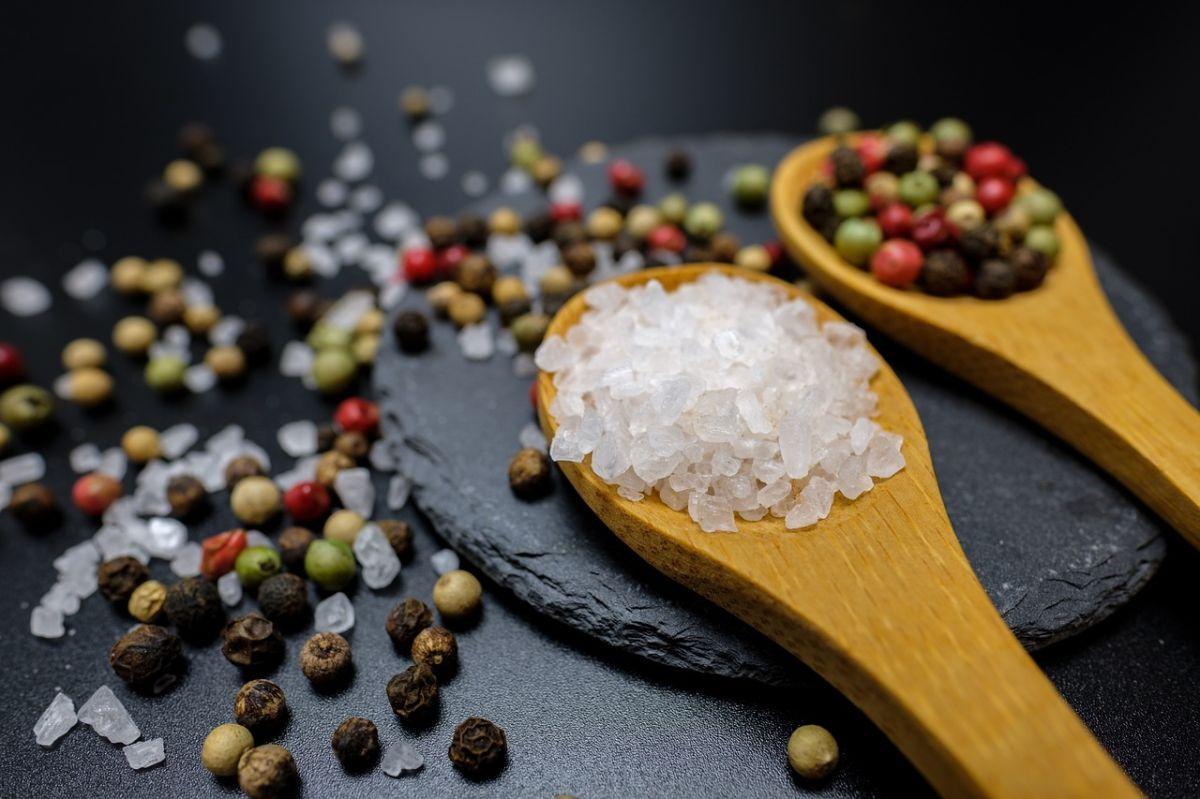 ¿Qué sustitutos de la sal existen?