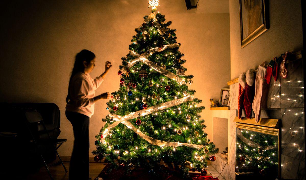 Hay baja oferta de árboles de Navidad esta temporada.
