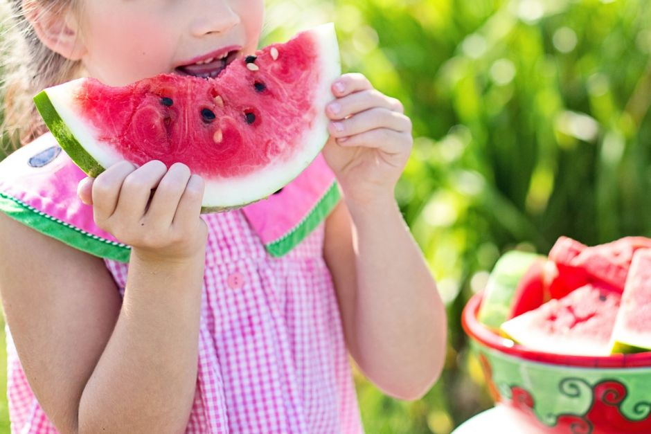 plant play fruit summer food green 872151