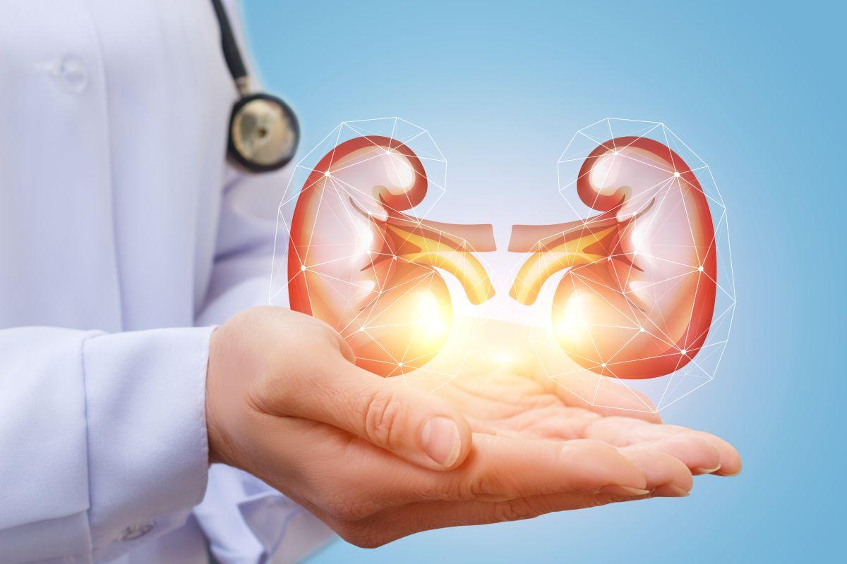 Alimentos que debe evitar si tiene o tuvo piedras en los riñones