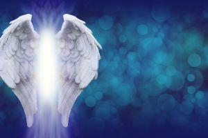 Un ángel para cada mes del año 2020