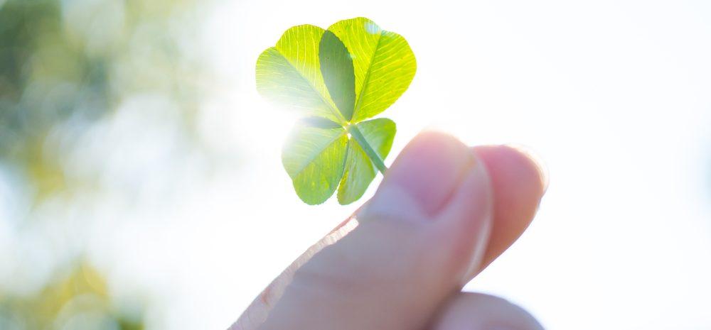 Los 5 mejores amuletos de la suerte con tréboles de 4 hojas para la prosperidad