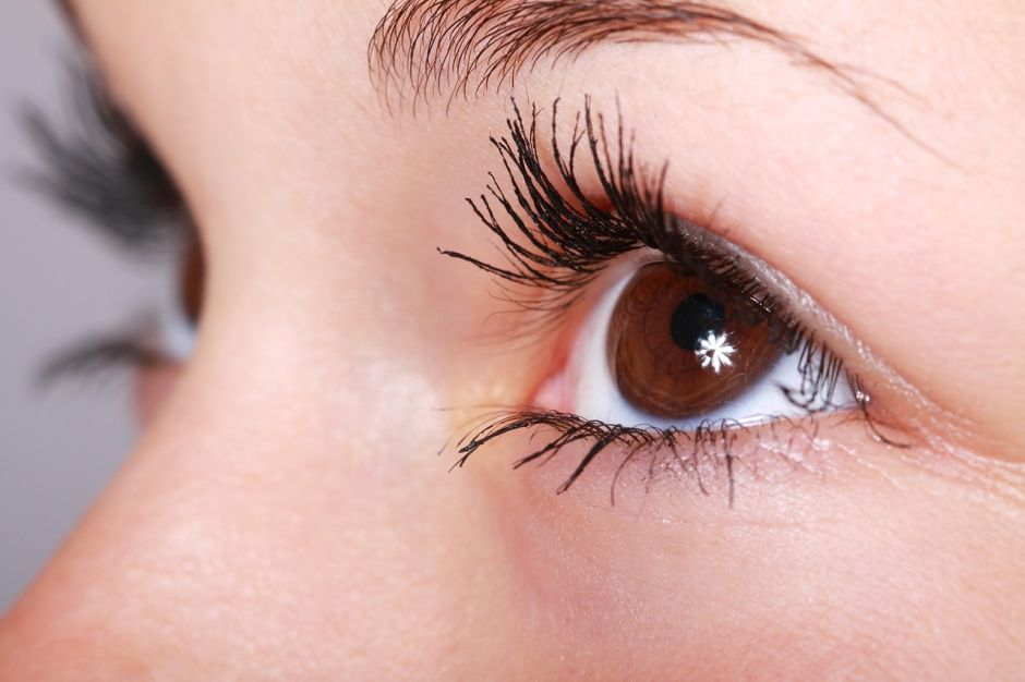 ¿Cuáles son los mejores alimentos para cuidar la vista?