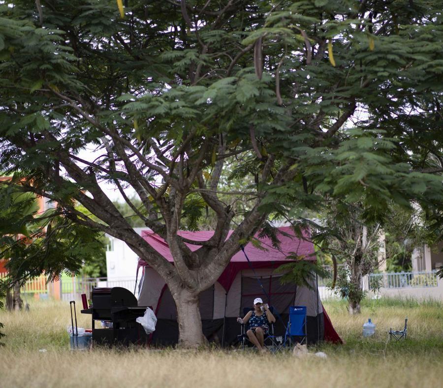 Secuelas del sismo en Puerto Rico: detectan caso de sarna humana en campamento improvisado de Yauco