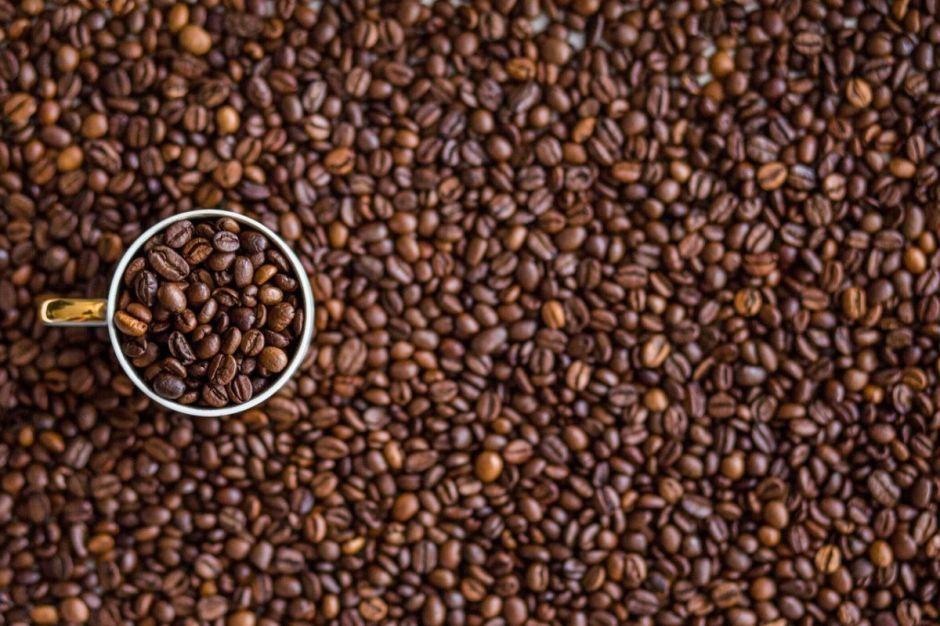 Café de Veracruz y otros 13 alimentos mexicanos que quizá no sabías que tienen Denominación de Origen