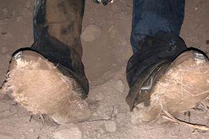 """Patrulla Fronteriza rastrea a indocumentados que calzaban """"zapatos alfombra"""""""