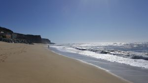 ¿Millonarios pueden apropiarse de playas en California? Ley dice que no; propietario de Silicon Valley pelea