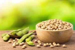 ¿El consumo de soja es perjudicial para la salud?