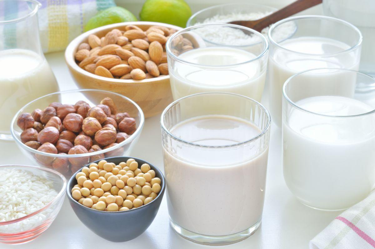 ¿Cuáles son los tipos de leche que aportan más calorías?