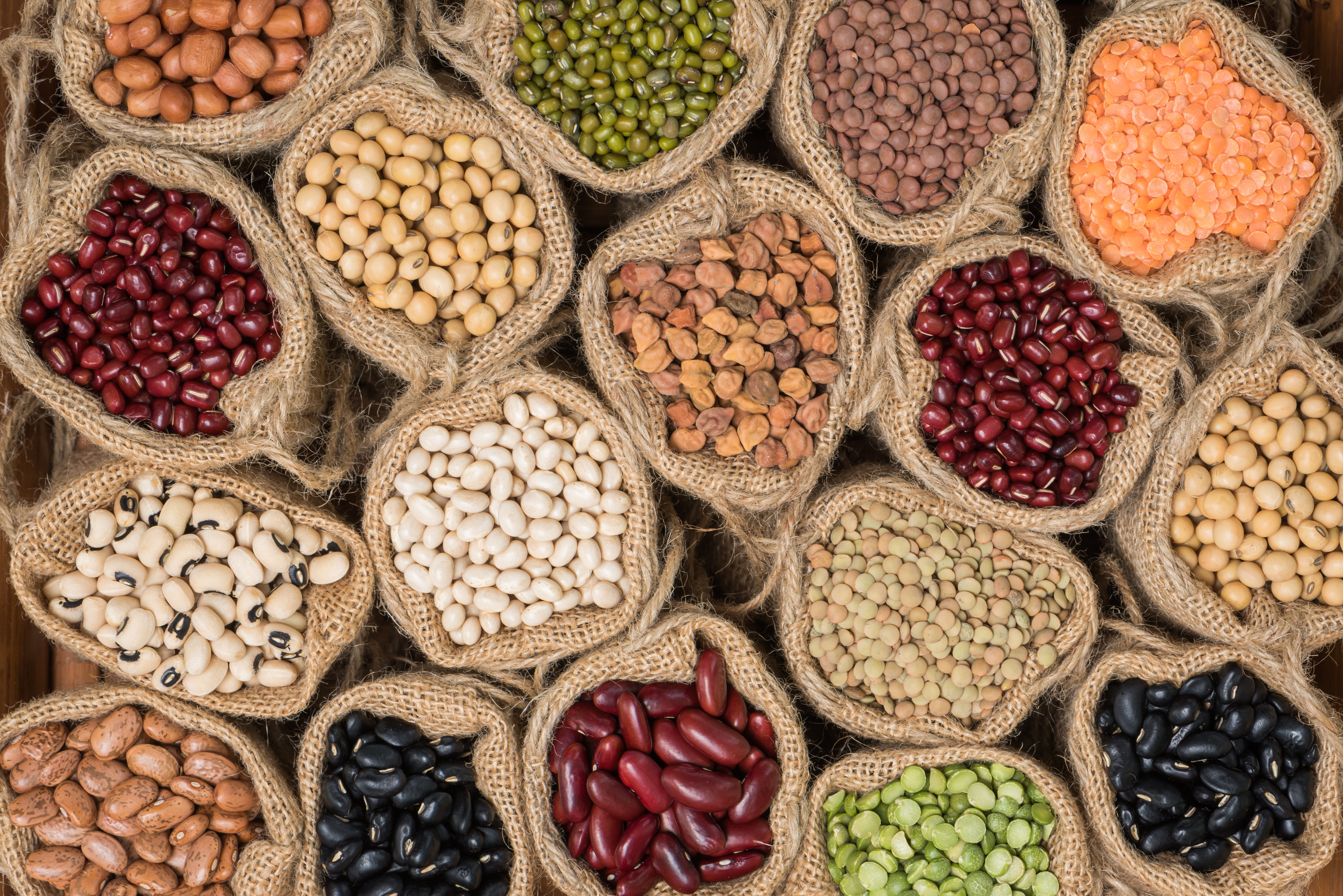 Do you like legumes but they always cause you gas and an upset stomach?  Discover infallible tips to cook them correctly