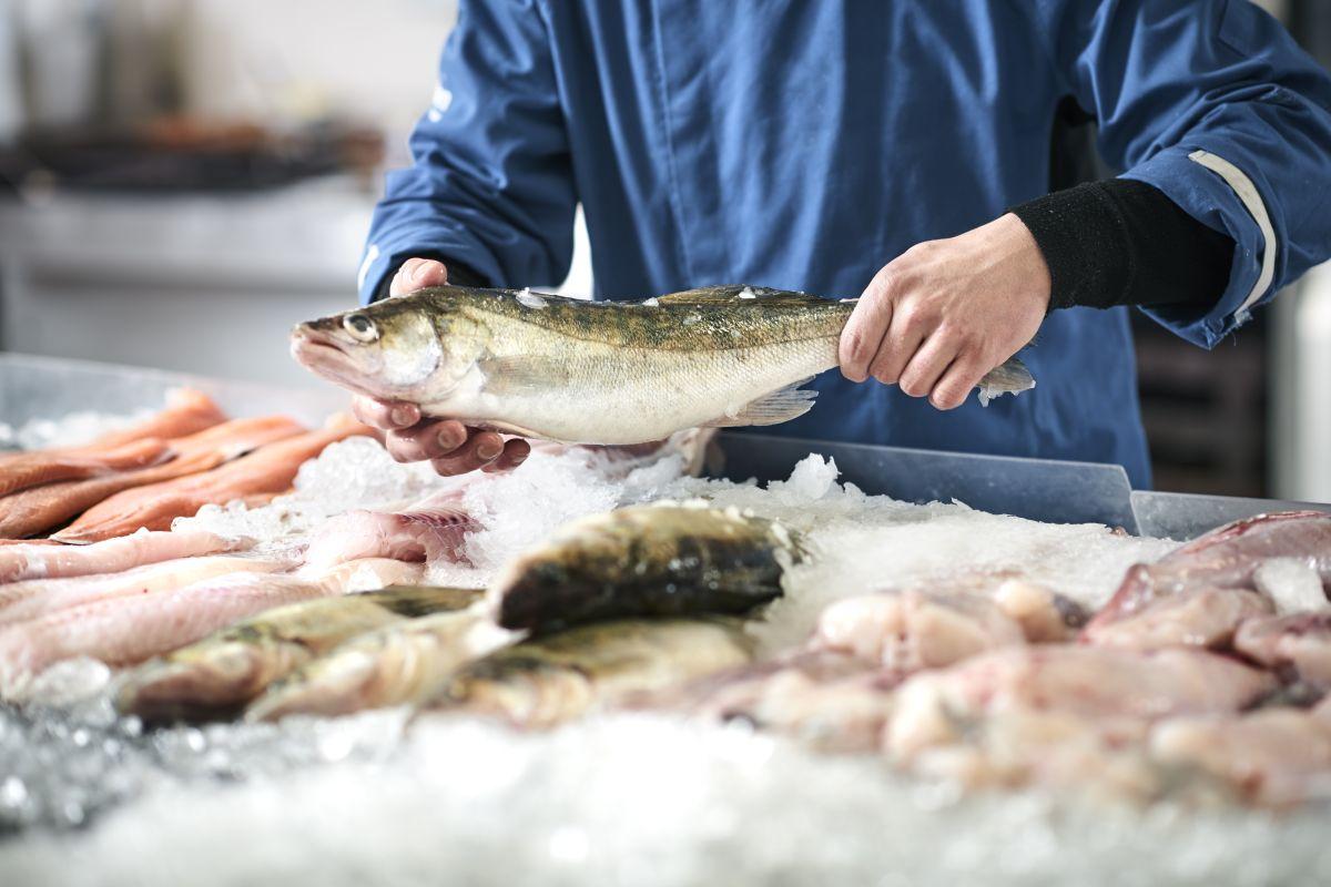 Estos son los beneficios del pescado para quienes sufren de artritis