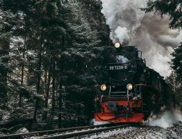 Viajes en tren: más lujosos de lo que parecen