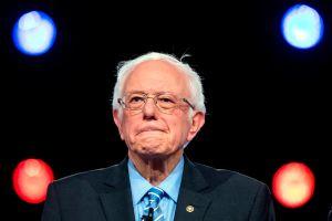 """Sanders lanza un video que muestra """"el entusiasta apoyo"""" de sus rivales demócratas"""