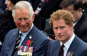 Sale a la luz que el Príncipe Harry recibe ayuda económica de su padre, el príncipe Charles