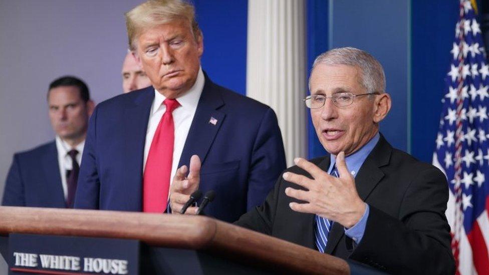 """Fauci, """"explicador en jefe"""" y contrapeso de Trump en la batalla contra el coronavirus en EEUU"""