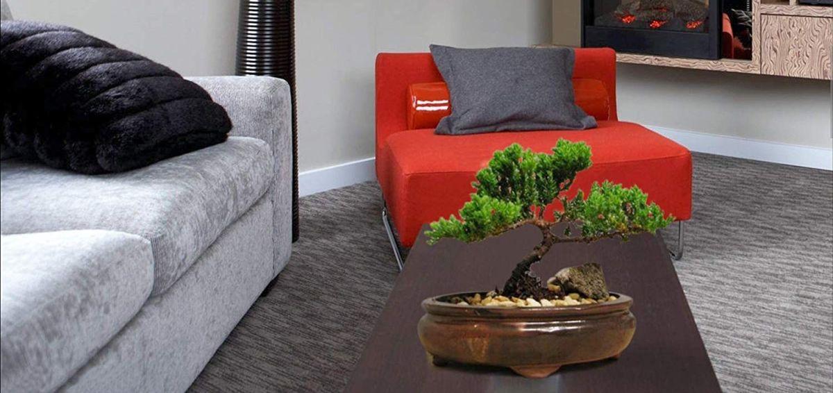 Los mejores 4 árboles bonsai artificiales que traerán la paz y la tranquilidad a tus espacios
