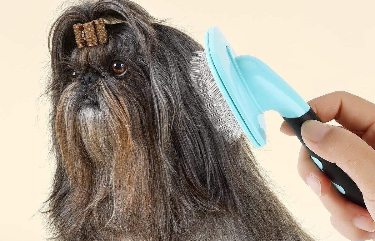 5 productos para mantener el pelo de tus mascotas saludable