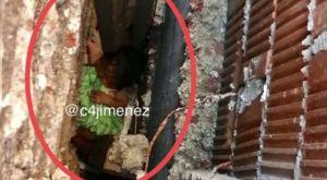 Abandonan a bebita recién nacida entre paredes de dos casas en Ciudad de México