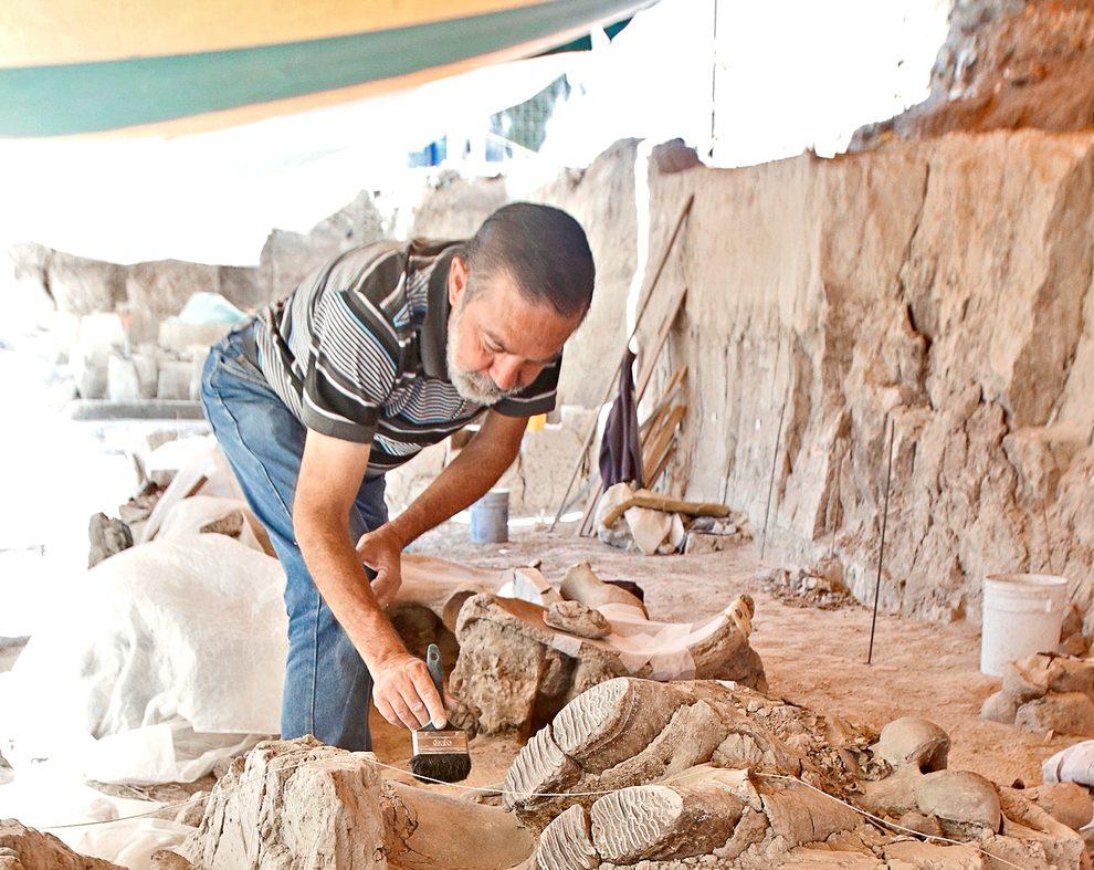 Estado de México cancela relleno sanitario por el hallazgo de restos de mamut