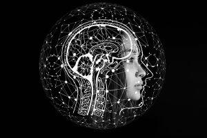Qué comer para reducir tu riesgo de enfermedad de Alzheimer
