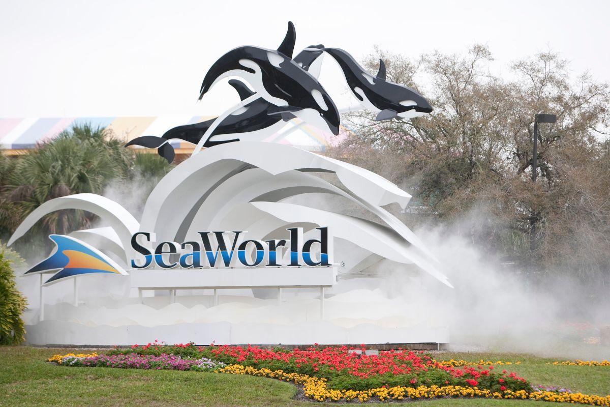 SeaWorld anuncia el despido de más del 90% de sus empleados ante la pandemia de COVID-19