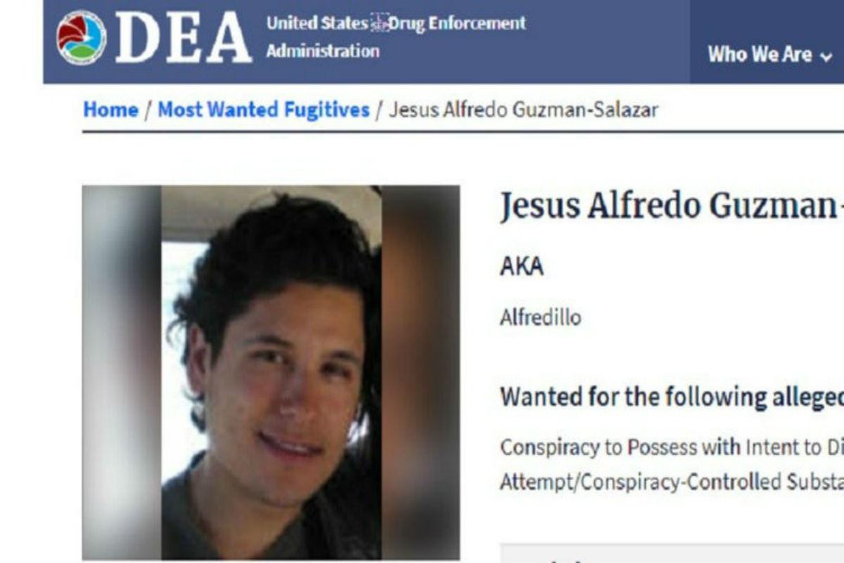 DEA Chicago se une a la caza del Alfredillo, hijo del Chapo Guzmán.