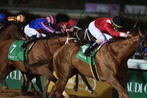 Acusan a decenas de entrenadores y veterinarios de drogar caballos para competencias