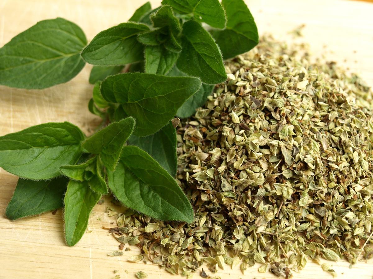 El orégano es una hierba, sin importar sus hojas estén frescas o secas.