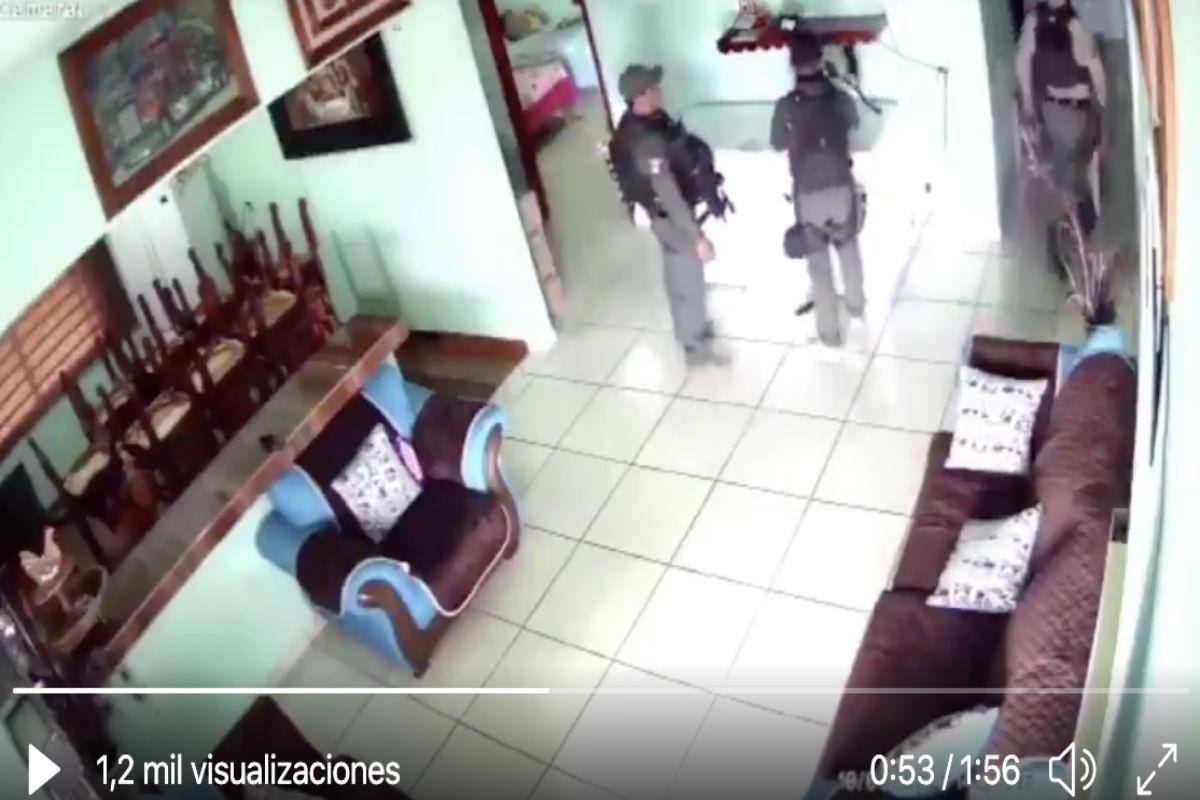 Revelan video de lugar donde CJNG alimentaba con víctimas a leones, cocodrilos y cerdos