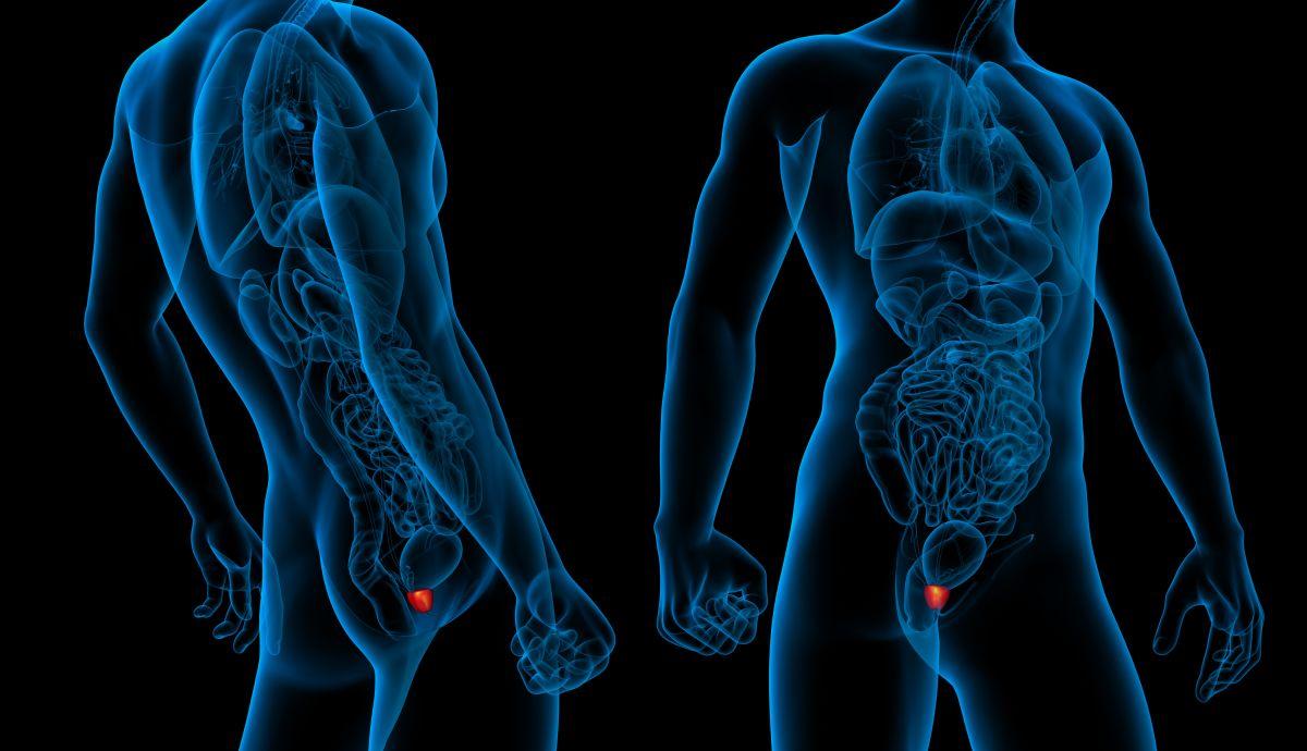 3 suplementos para tratar los problemas de próstata